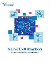 nerve cell marker brochure