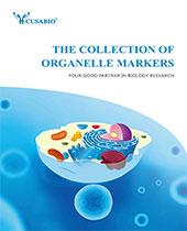 Organelle Markers brochure