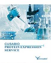 CUSABIO protein service