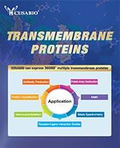 transmembrane protein catalog