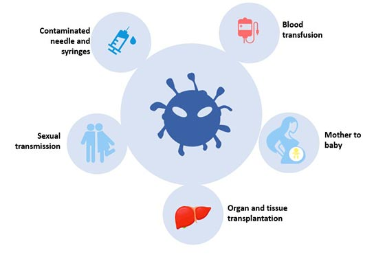 Transmission of hepatitis B infection