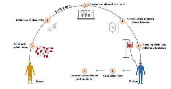 Hematopoietic cell transplantation (HCT)