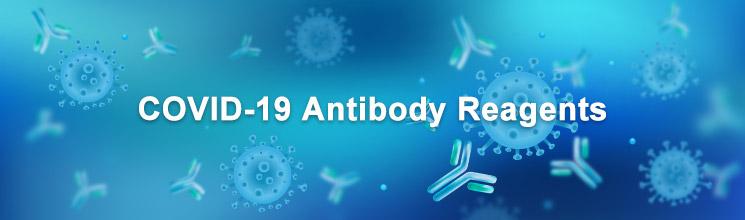 COVID-19 Antibody Reagents