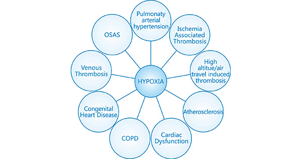 Commonly known CVDs with pathophysiology as a function of hypoxia signaling mechanisms