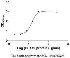 Transmembrane Proteins for research use - Cusabio c4a49bf6b69