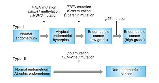 endometrial cancer is it genetic pastile pentru oameni împotriva paraziților