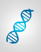 Cusabio offers RT-PCR Primers, Clone, and Tools Enzyme for Molecular Biology research.