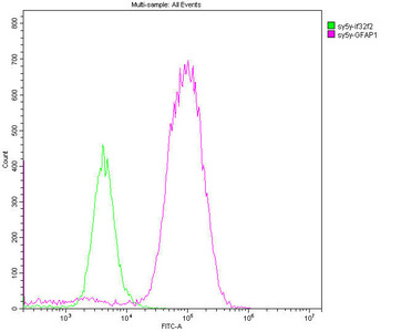 Flow Cytometry(FC) - GFAP Monoclonal Antibody