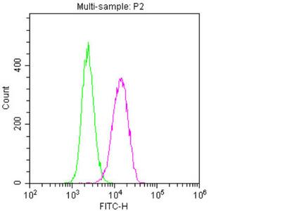 Flow Cytometry(FC) 1- NES Monoclonal Antibody