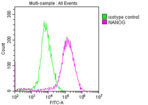 Flow Cytometry(FC) 2- NANOG Monoclonal Antibody