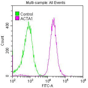 Flow Cytometry(FC) - ACTA1 Antibody