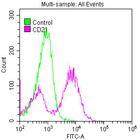 Flow Cytometry(FC) - CD21 Antibody