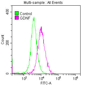 Flow Cytometry(FC) - GDNF Antibody