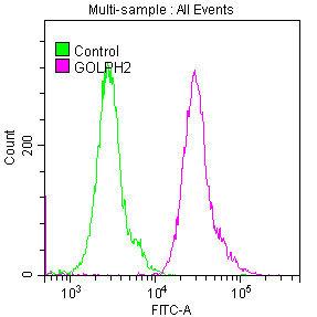 Flow Cytometry(FC) - GOLM1 Antibody