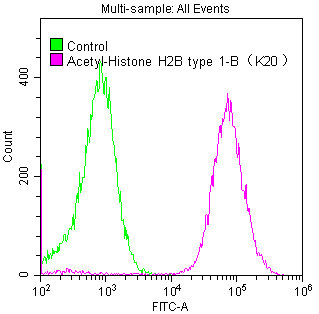 Flow Cytometry(FC) - Acetyl-Histone H2B type 1-B(K20)Antibody