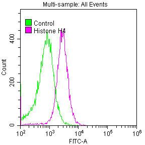 Flow Cytometry(FC) - Histone H4 Antibody