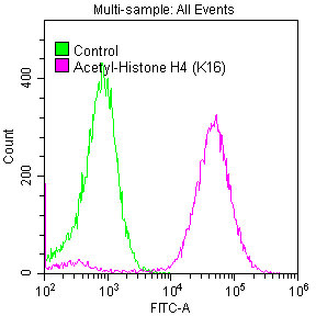 Flow Cytometry(FC) - Acetyl-Histone H4 (K16) Antibody