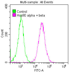 Flow Cytometry(FC) - HSP90AA1/HSP90AB1 Antibody