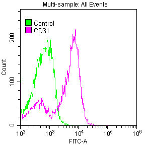 Flow Cytometry(FC) - CD31 Antibody