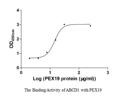 binding activity- Recombinant protein Human ABCD1