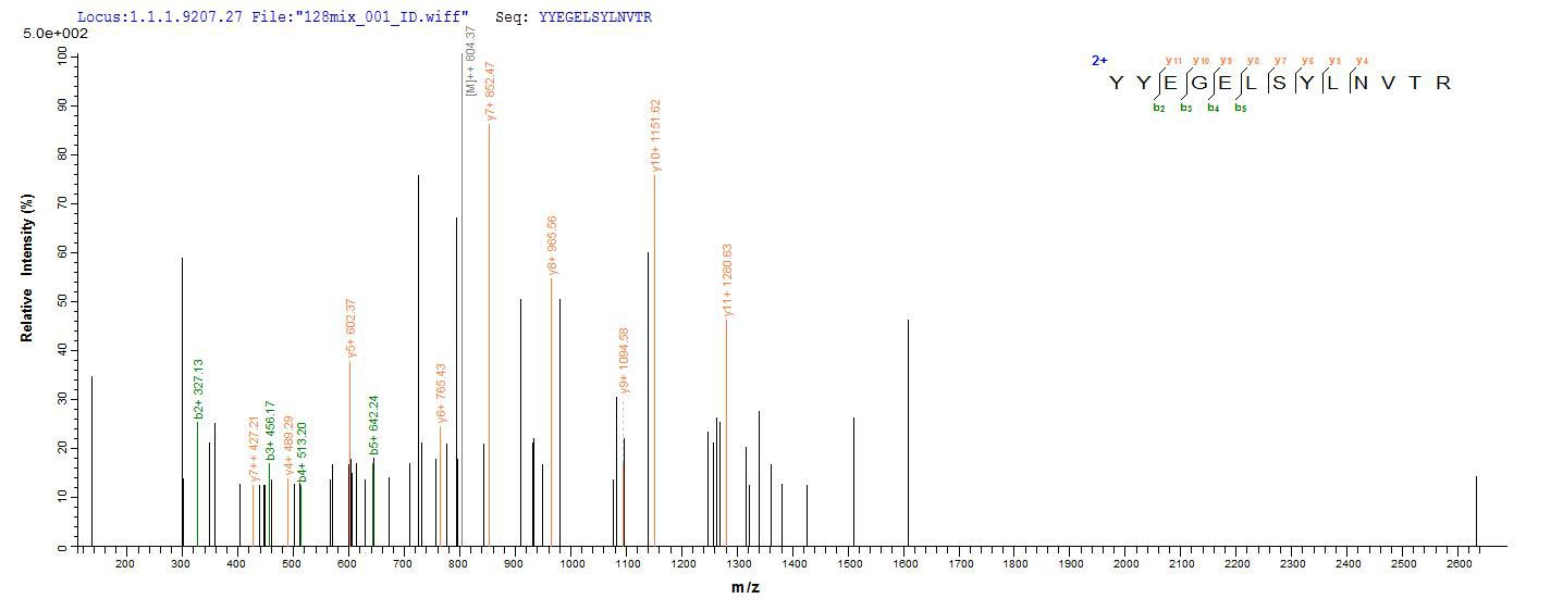LC-MS Analysis 2- Recombinant protein Cricetulus H671_3g9701
