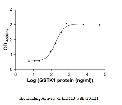 binding activity- Recombinant protein Human GSTK1