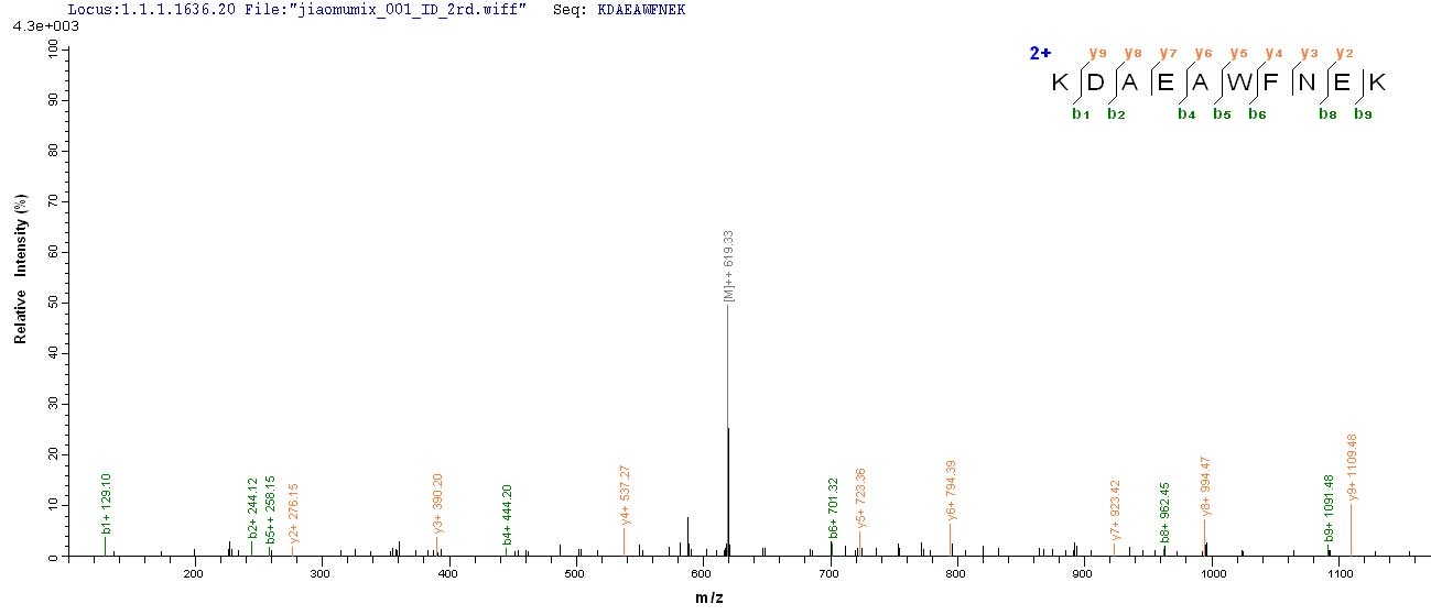LC-MS Analysis 2- Recombinant protein Human KRT10