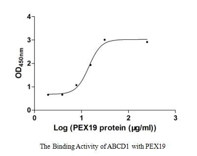 binding activity- Recombinant protein Human PEX19