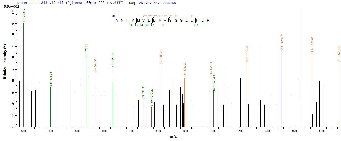 LC-MS Analysis 1- Recombinant protein Chicken Mylk