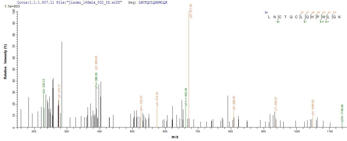 LC-MS Analysis 2- Recombinant protein Chicken Mylk