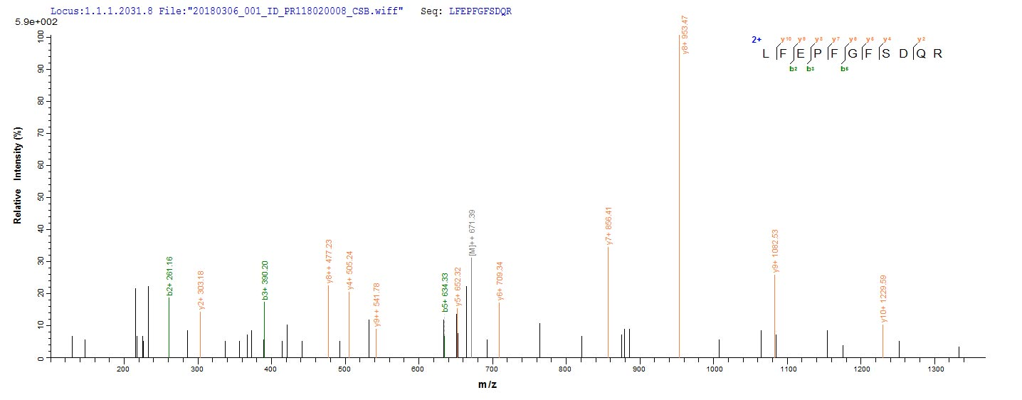 LC-MS Analysis 1- Recombinant protein Human L3