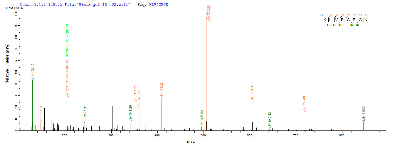 LC-MS Analysis 1- Recombinant protein Rabies G