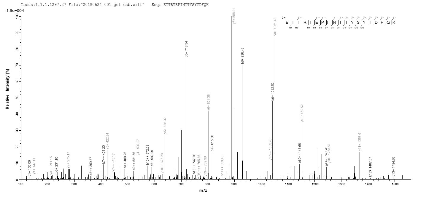 LC-MS Analysis 2- Recombinant protein Human DCAF16
