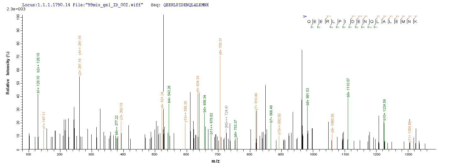 LC-MS Analysis 1- Recombinant protein Human MME