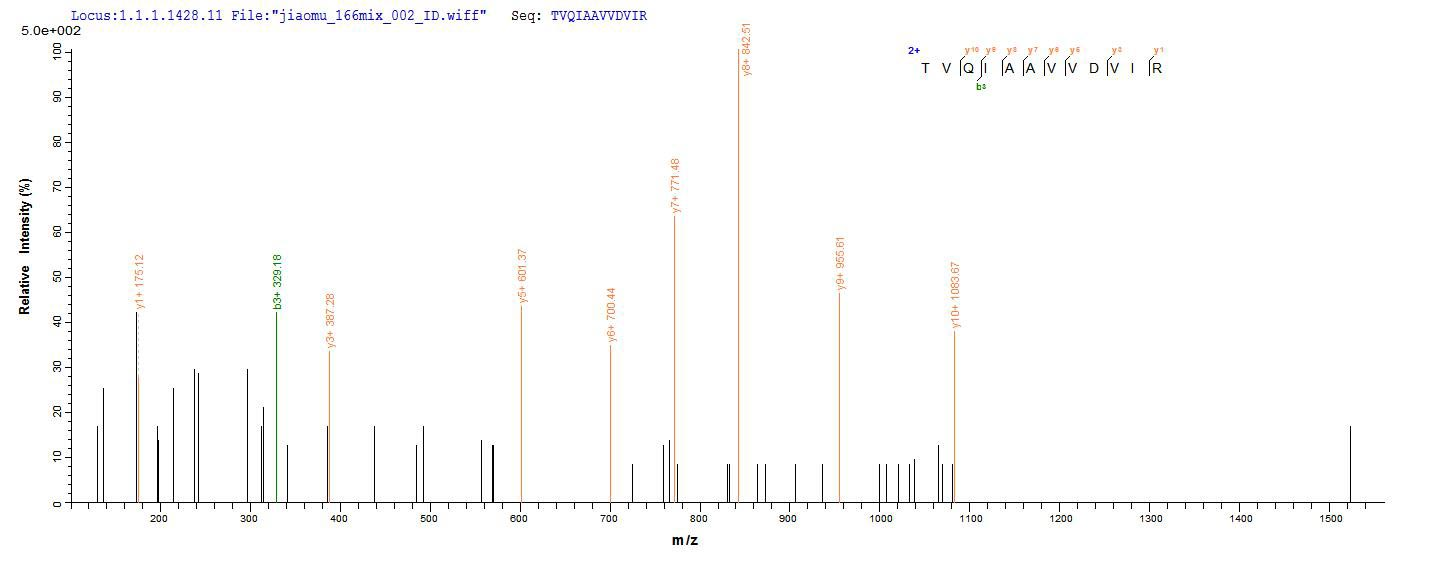 LC-MS Analysis 2- Recombinant protein Human PIP