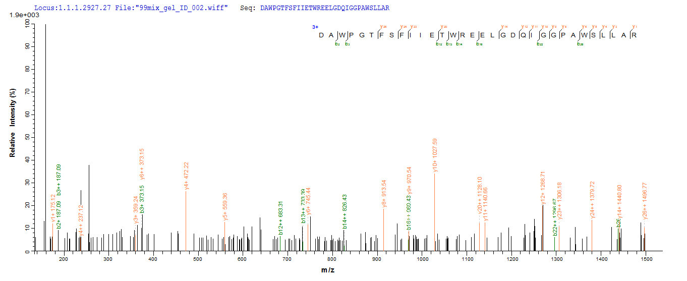 LC-MS Analysis 2- Recombinant protein Human DLL3